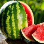 هندوانه به شرط چاقو و موفقیت به شرط تغییر