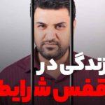 ویدیو زندگی در قفس شرایط از امیر باقری